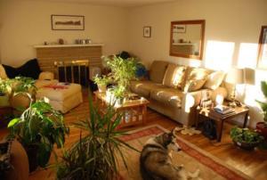 Hóa giải các cạnh gờ và góc trong phòng khách