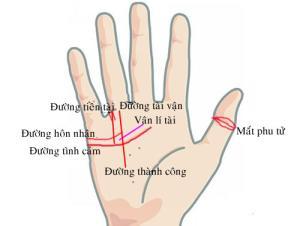 Dấu hiệu bàn tay của quý cô có hôn nhân viên mãn