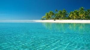 Giấc mơ về biển cả