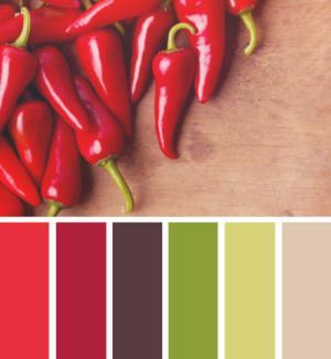 Tùy biến màu sắc cho nhà bếp hút tài vượng khí