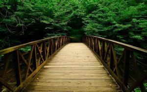 Chớ nên mạo hiểm nếu nằm mơ thấy cây cầu (P1)