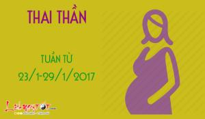 Xem ngày tốt xấu đón lành tránh dữ cho thai phụ: Tuần từ 23-29/1/2017