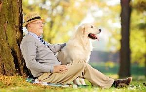 Chuyện lạ khó tin nhưng có thật: Người chuyển kiếp thành... chó