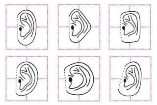 Hãy cho biết tai bạn hình gì, tôi dám khẳng định bạn là người thế nào