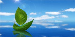 Lời Phật dạy về tình yêu nhất định phải khắc cốt ghi tâm