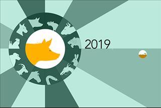 Năm 2019 là năm con gì? Năm 2019 mệnh gì?