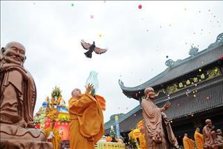 Lời Phật dạy: Bạn đã hiểu đúng về lòng từ bi?
