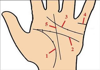 Xem chỉ tay: Xem đường Trí Tuệ trong lòng bàn tay