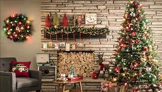 Tại sao ngày lễ Giáng sinh không thể thiếu cây thông Noel?