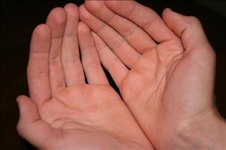 Xem bói chỉ tay: Đường sinh đạo phân nhánh có ảnh hưởng thế nào tới vận mệnh?
