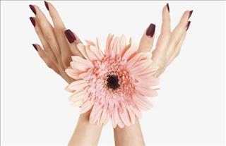 Xòe bàn tay đo vận may trong cuộc đời của chính bạn