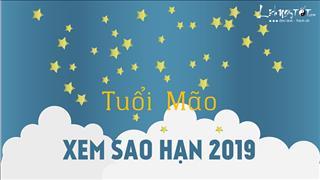Xem sao hạn 2019 tuổi Mão: Chi tiết cho các tuổi Tân Mão, Kỷ Mão, Quý Mão, Đinh Mão, Ất Mão