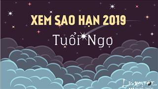 Xem sao hạn 2019 tuổi Ngọ: Chi tiết cho các tuổi Bính Ngọ, Mậu Ngọ, Giáp Ngọ, Canh Ngọ, Nhâm Ngọ