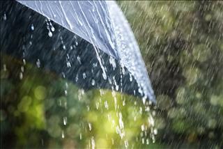 Dự báo thời tiết ngày mai 8/9: Hà Nội, Thái Nguyên có mưa rào