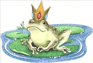 Khám phá giấc mơ về con ếch