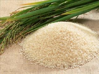 Giấc mơ về lúa gạo ẩn chứa điều gì?