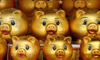 Phong thủy kinh tế năm Kỷ Hợi 2019: Nhà đầu tư cần hết sức cẩn trọng