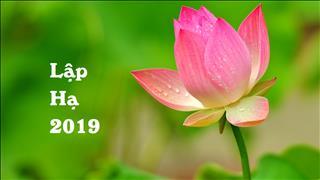 Lập Hạ 2019 là ngày nào? Nên và không nên làm gì trong tiết Lập Hạ?