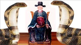 Ly kỳ chuyện RẮN TRẢ THÙ và nỗi oan khiên trong vụ án LỆ CHI VIÊN