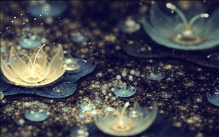 Tử vi Thứ 7 ngày 23/3/2019 của 12 cung hoàng đạo: Bạch Dương biết cảm thông, Cự Giải lại bao đồng