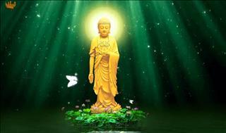 Lời Phật dạy về cuộc sống an nhiên giúp bạn mạnh mẽ trước mọi sóng gió