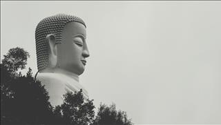 Câu nói hay của Phật về tình bạn: Chọn sai sẽ tự hủy hoại chính mình