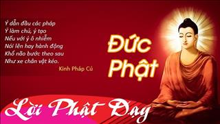 Lời Phật dạy về đạo làm người không phải ai cũng thấu tỏ