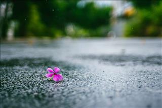 Dự báo thời tiết 10 ngày tới 8/4-18/4: Cả nước xuất hiện những cơn mưa rào bất chợt xen lẫn nắng nóng