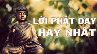 Lắng nghe lời Phật dạy về công việc để sớm có sự nghiệp thành công
