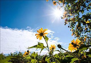 Dự báo thời tiết 3 ngày tới 18-20/6: Nắng nóng diện rộng tại Trung Bộ, mưa dông ở Bắc Bộ