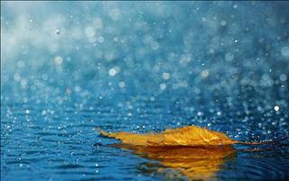 Dự báo thời tiết 10 ngày tới 15-25/7: Bắc Bộ có đợt mưa, Trung Bộ tiếp tục nắng nóng