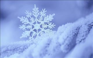 Mơ thấy tuyết: Dễ bị mọi người xung quanh cô lập do hiểu lầm