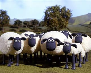 Giải mã giấc mơ về chú cừu