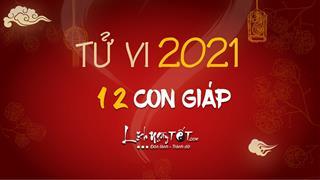 Tử vi 2021 của 12 con giáp: Dự báo chính xác vận hạn mọi phương diện năm Tân Sửu