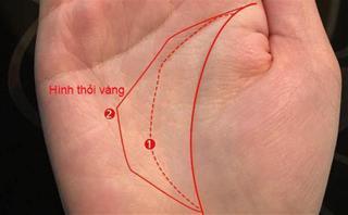 Liệu bạn có may mắn sở hữu lòng bàn tay có hình thỏi vàng - tướng tay số hưởng cả đời?