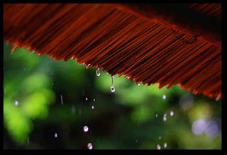 Dự báo thời tiết ngày 6/7/2021: Hà Nội mưa rào rải rác, nhiệt độ giảm