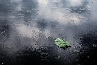 Dự báo thời tiết ngày 17/9/2021: Hà Nội mưa rào và dông rải rác, Đà Nẵng nắng nhẹ