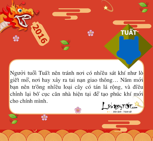 Infographic Don may nam moi cho 12 con giap hinh anh goc 12