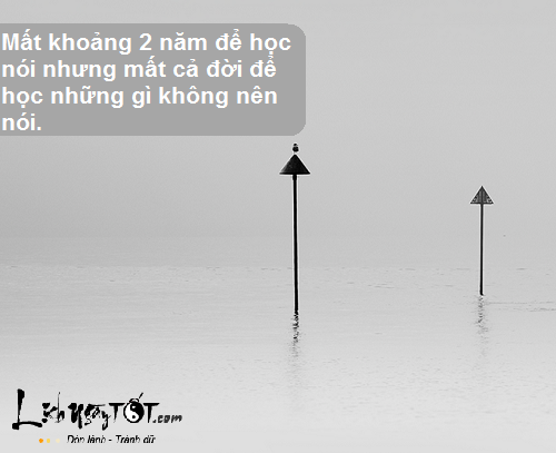 8 triet ly song tuyet doi dung quen hinh anh goc 6