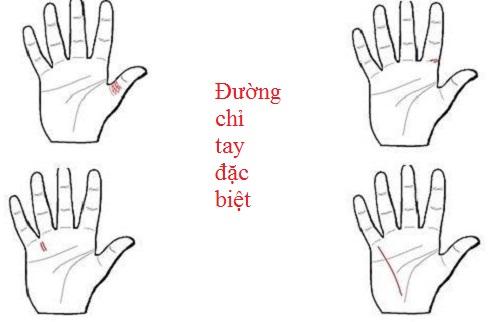 He lo 4 duong chi tay dac biet khong phai ai cung co hinh anh goc 2