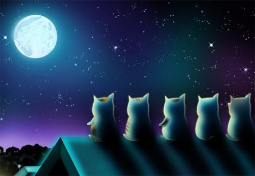 Tâm hồn của bạn đại diện cho ánh trăng như thế nào?