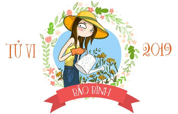 Bao Binh 2019 Tong Quan