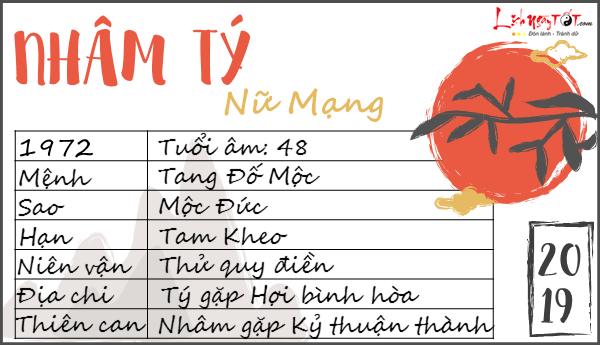 Tu vi tuoi Nham Ty 2019 nu mang