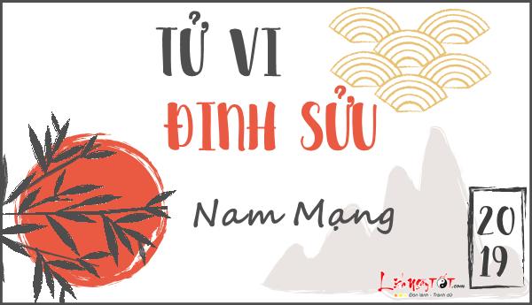 Tu vi 2019 tuoi Dinh Suu nam mang