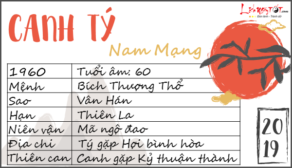 Tu vi tuoi Canh Ty 2019 nam mang
