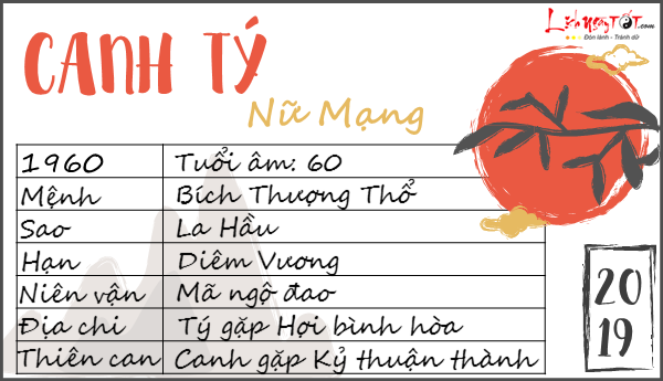 Tu vi tuoi Canh Ty 2019 nu mang