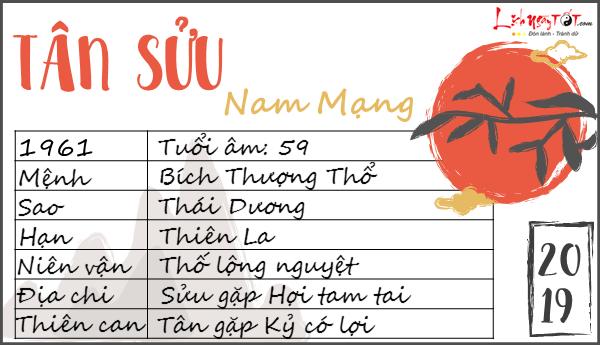 Tu vi tuoi Tan Suu  2019 nam mang