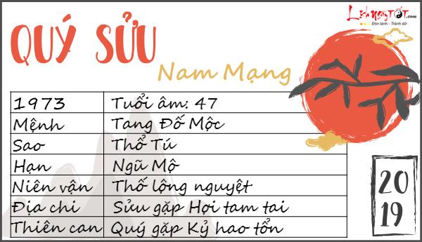 Tu vi tuoi Quy Suu 2019 nam mang