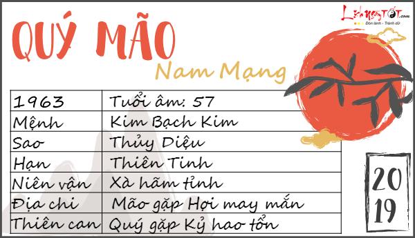 Xem tu vi 2019 tuoi Quy Mao nam menh