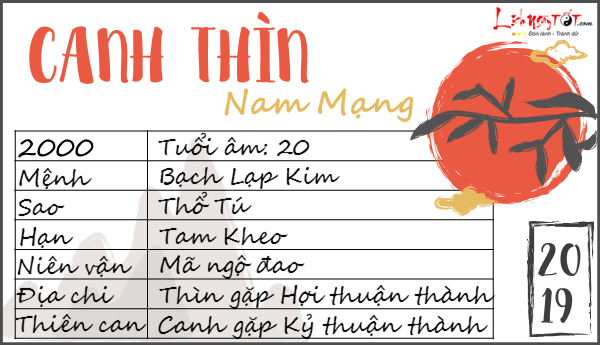Tu vi 2019 tuoi Canh Thin nam mang chi tiet